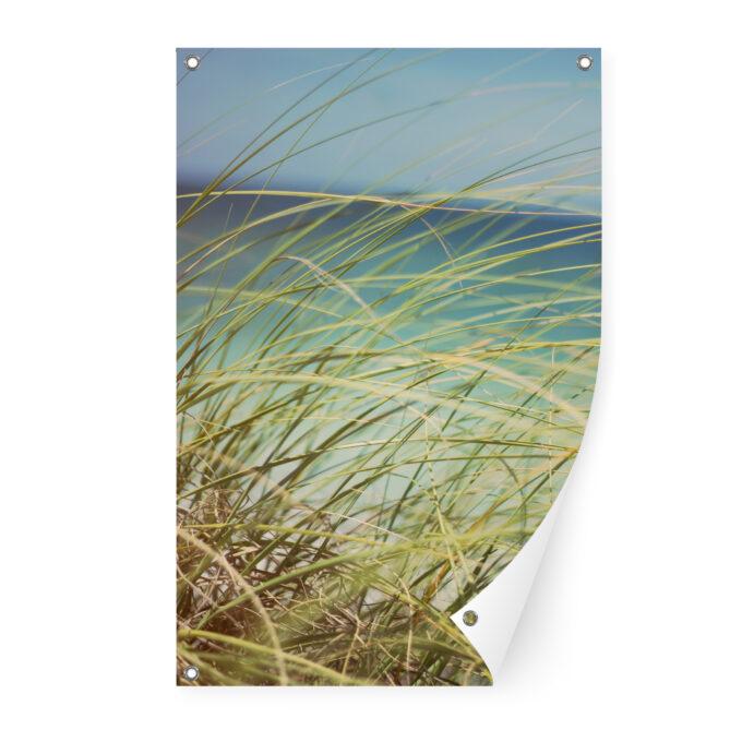 tuinposter-duingras-60x90-voor