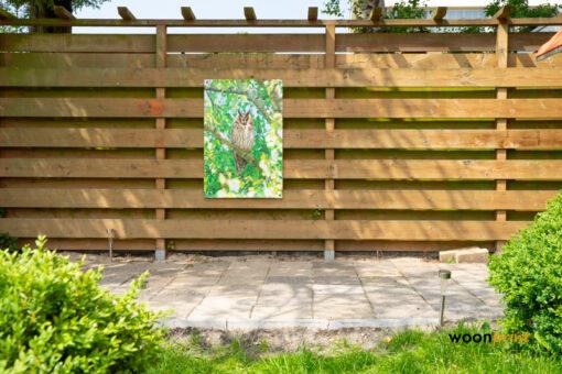tuinposter-uil-schutting-tuin